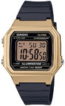 Casio Standard Collection Wrist Watch - Gold and Black