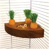 Rosewood - Toy Carrot Toy n Treat Holder