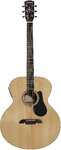 Alvarez ABT60E Artist 60 Series Baritone Acoustic Guitar (Including case)