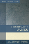 A Commentary On James - Aida Besancon Spencer (Hardcover)