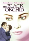 Black Orchid (Region 1 DVD)