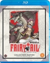 Fairy Tail: Collection 11 (Blu-ray)