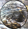 Currents - Way It Ends (Picture Disc) (Vinyl)
