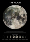 The Moon Phases Poster (61x91,50cm)