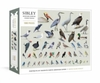 David Allen Sibley - Sibley Backyard Birding Puzzle (1000 Pieces)