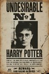 Harry Potter - Undesirable No 1 Maxi Poster (61x91,50cm)
