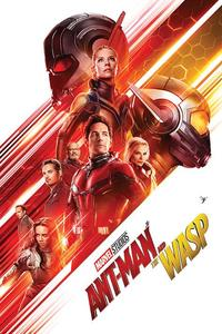 Ant-Man And The Wasp (One Sheet) Maxi Poster (61x91,50cm) - Cover