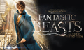 New Merch Added - Fantastic Beasts and Where to Find Them - Thumbnail