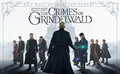 Fantastic Beasts The Crimes of Grindelwald (DVD/Blu-ray/3D Blu-ray/4K Ultra HD) Now In Stock & Shipping - Thumbnail