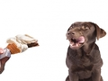 Spoil Your Pet With All Sorts Of Chews & Treats Available - Cuthberts, Whimzees, Denta Deli & more - Thumbnail